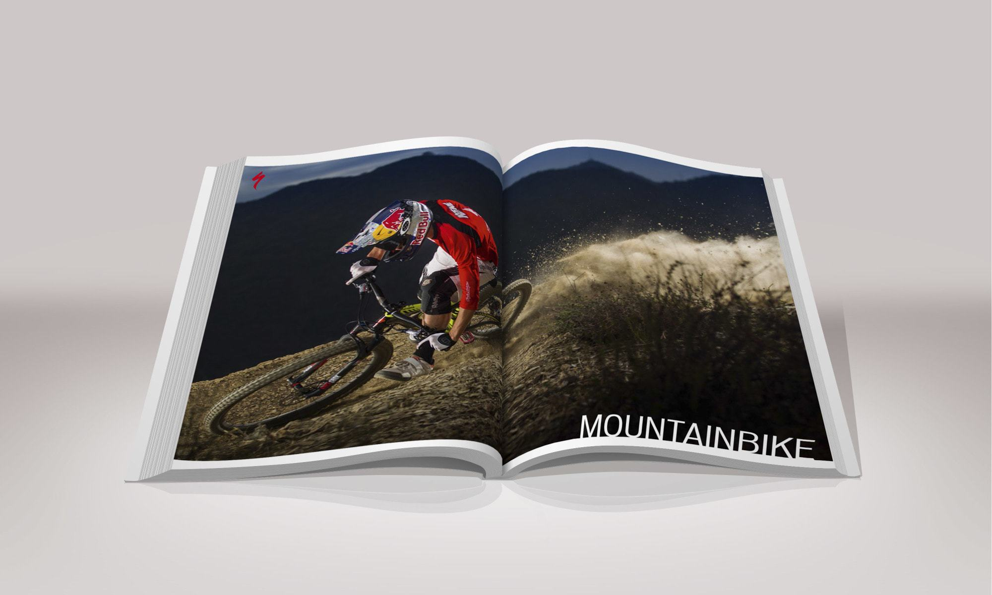 Specialized Hauptkatalog